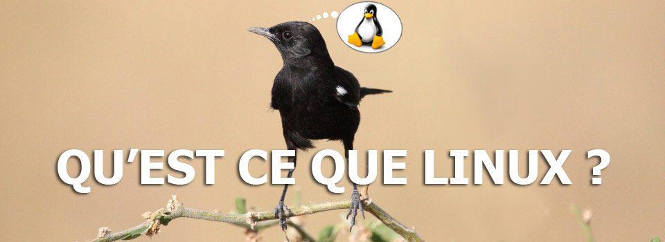 Qu'est ce que Linux ?